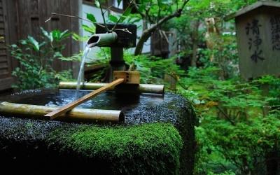 庭院菜园水管设计